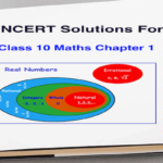 NCERT Solutions for Class 10 Maths Chapter 1