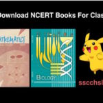 NCERT Books For Class 12 In PDF Download Now !