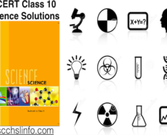 NCERT Class 10 Science Solutions